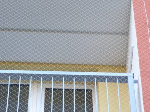 Netze gegen Tauben PET 50/0,9 mm transparent - 4
